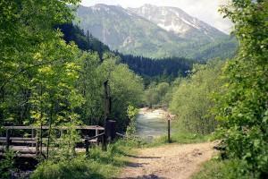 Naturpark Ötscher